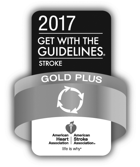 Stroke Gold Plus 2017